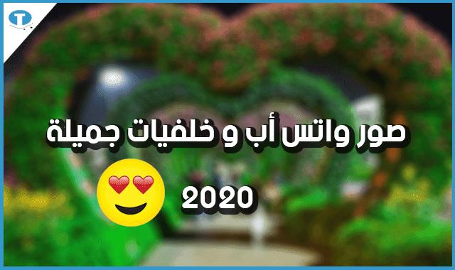 خلفيات واتس اب جميلة 2020 – صور و رمزيات واتس جديدة
