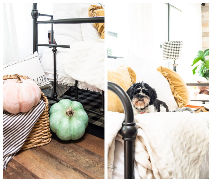 pumpkins in basket, vintage daybed with pillows, puppy