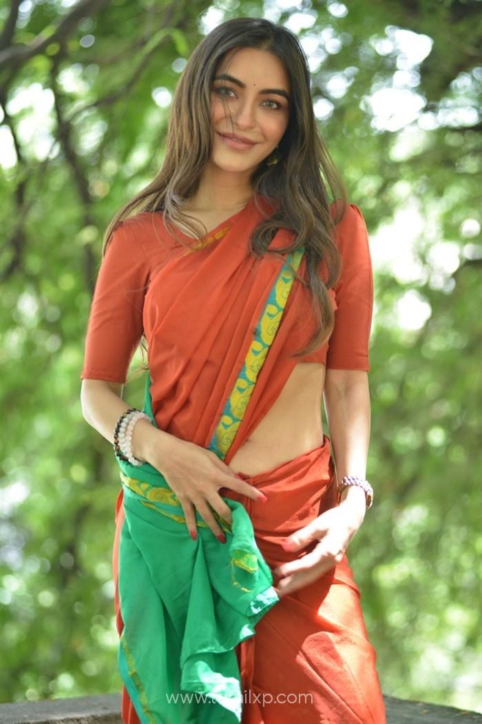 Actress Nikkesha Saree Images