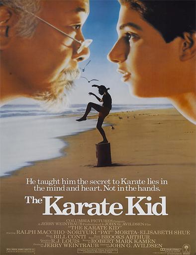 Ver Karate kid, el momento de la verdad (1984) Online