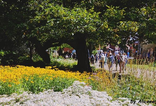 atractii-turistice-York-Manastirea-Sfanta-Maria