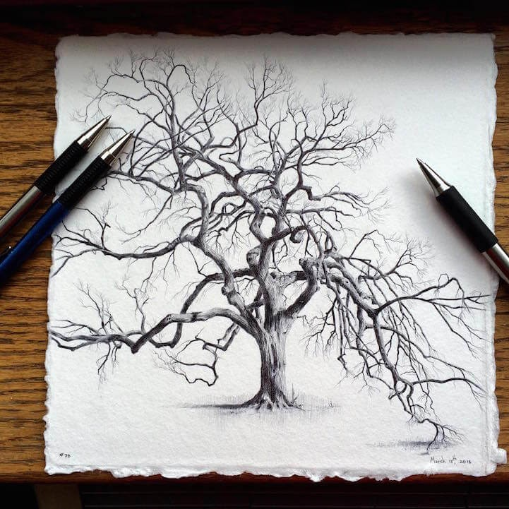 03-Dina-Brodsky-Tree-Drawings-www-designstack-co