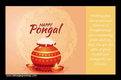 Pongal pictures  and images