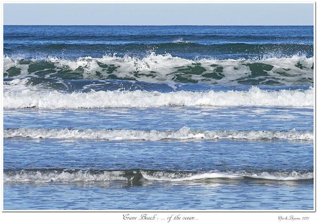 Crane Beach: ... of the ocean...