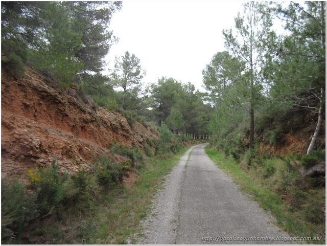 """Naturaleza, por algo es una vía """"verde"""""""
