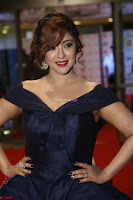 Payal Ghosh aka Harika in Dark Blue Deep Neck Sleeveless Gown at 64th Jio Filmfare Awards South 2017 ~  Exclusive 099.JPG