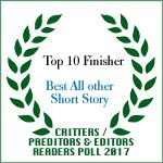 TOP 10 FINISHER BEST ALL OTHER SHORT STORY