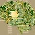 USP lança curso on-line gratuito sobre inteligência artificial na saúde