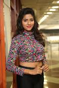 shalu chaurasiya latest sizzling pics-thumbnail-10