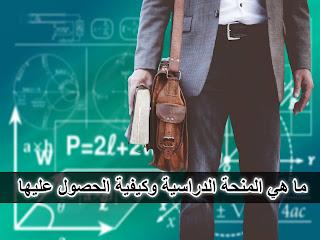 ما هي المنح الدراسية وكيفية الحصول عليها ؟