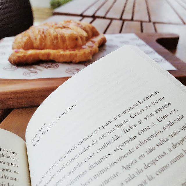 livro dias de abandono