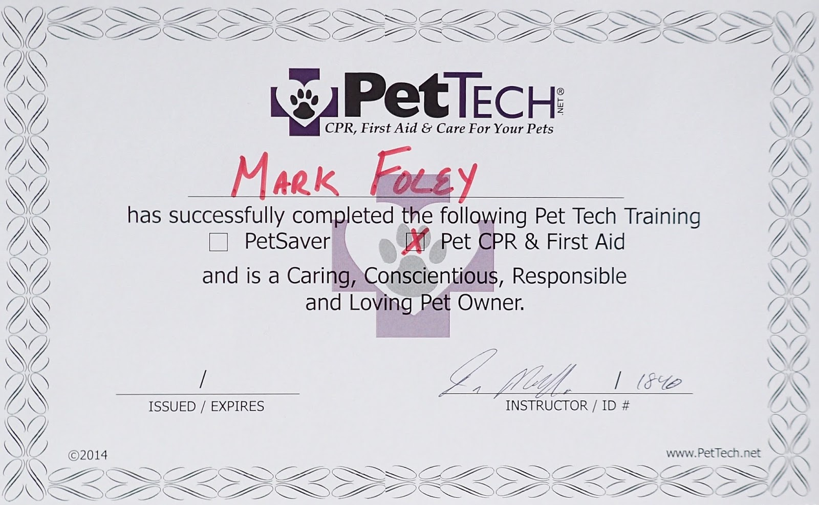 On The Fly Pet Sitting Dover Nh Pet Sitting Cpr And First Aid A