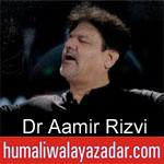 https://www.humaliwalayazadar.com/2019/09/dr-aamir-rizvi-nohay-2020.html