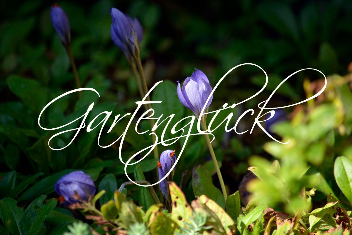 Gartenglueck