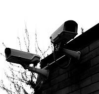 telecamere nidi