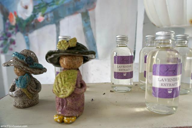 Extracto de Lavanda de Laromay Lavender Farm en Hollis, New Hampshire