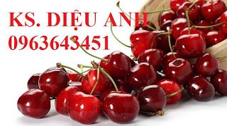 Cung cấp cây giống, cây trưởng thành cherry anh đào, cherry Mỹ, cherry Brazil, cherry nhiệt đới xịn