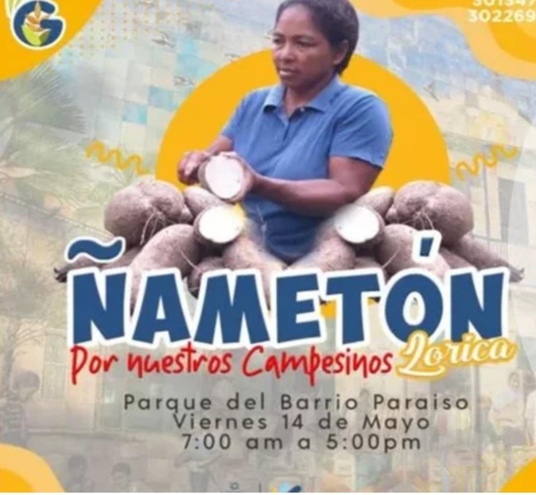 """¡Qué buena nota! En Lorica será la """"Ñameton"""""""