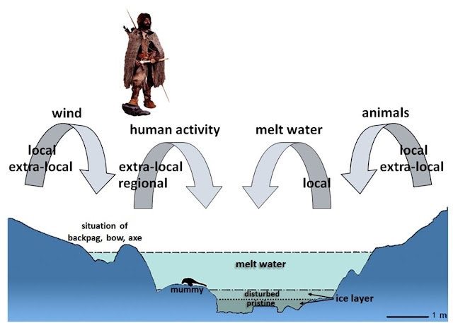 Οι κατεψυγμένοι βρύα αποκαλύπτουν ενδείξεις για το τελευταίο ταξίδι του Iceman Otzi