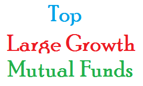 Top Performing Large Growth Mutual Funds 2014