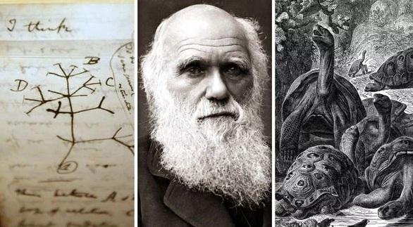 El Origen de las Especies | Charles Darwin