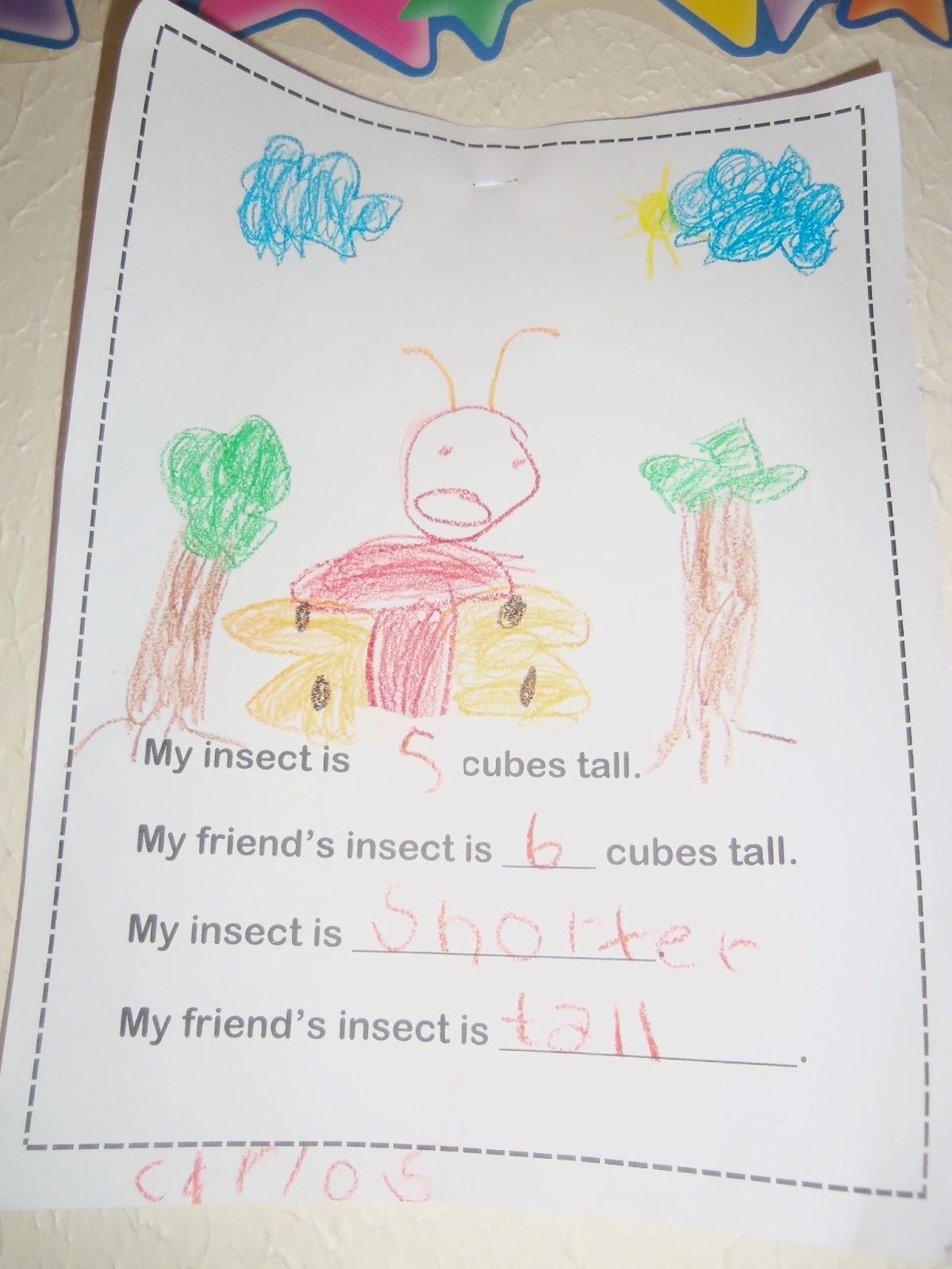 Mrs Wood S Kindergarten Class Insect Measurement