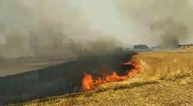 रविवार की दोपहर गेहूं की पराली में अज्ञात कारण से लगी आग, हड़कंप