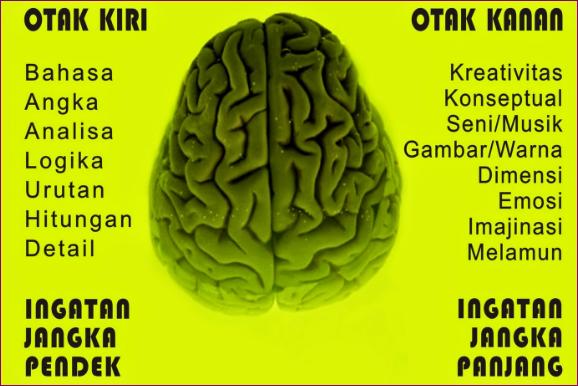 Ini 8 Alasan Kenapa Otak Manusia Butuh Membaca