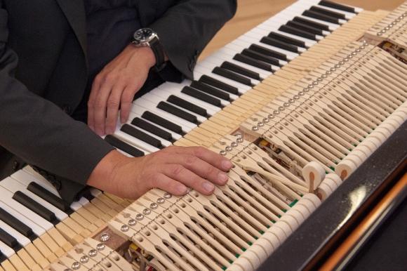 Chỉnh âm đàn Piano có thể làm thay đổi cấu trúc não bộ