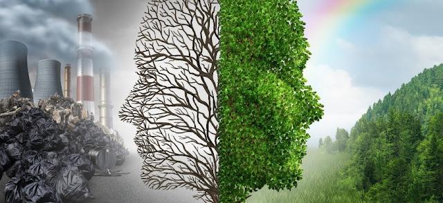 Захист прав людини в сфері екології
