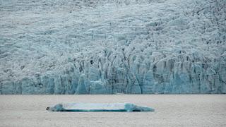 Chunks of Ice