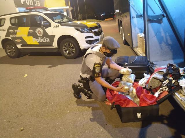 Durante fiscalização em ônibus, Polícia Rodoviária localiza 11 quilos de skank em bagagem de manicure