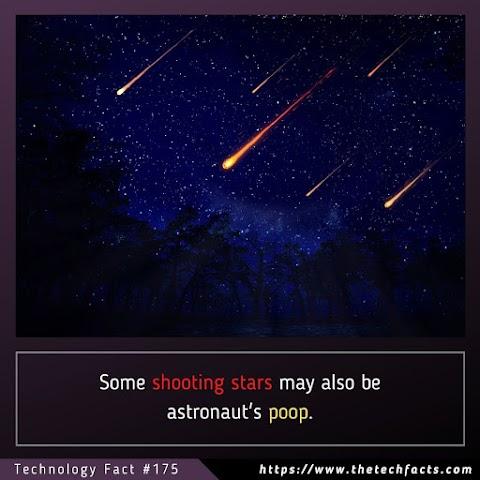 Technology Fact #175