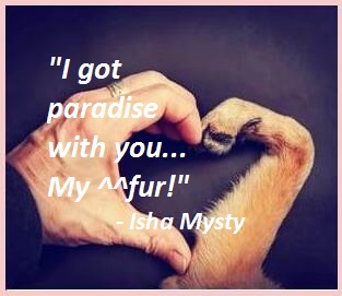Dog quotes love and loyalty for dog lovers for Instagram Isha Mysty