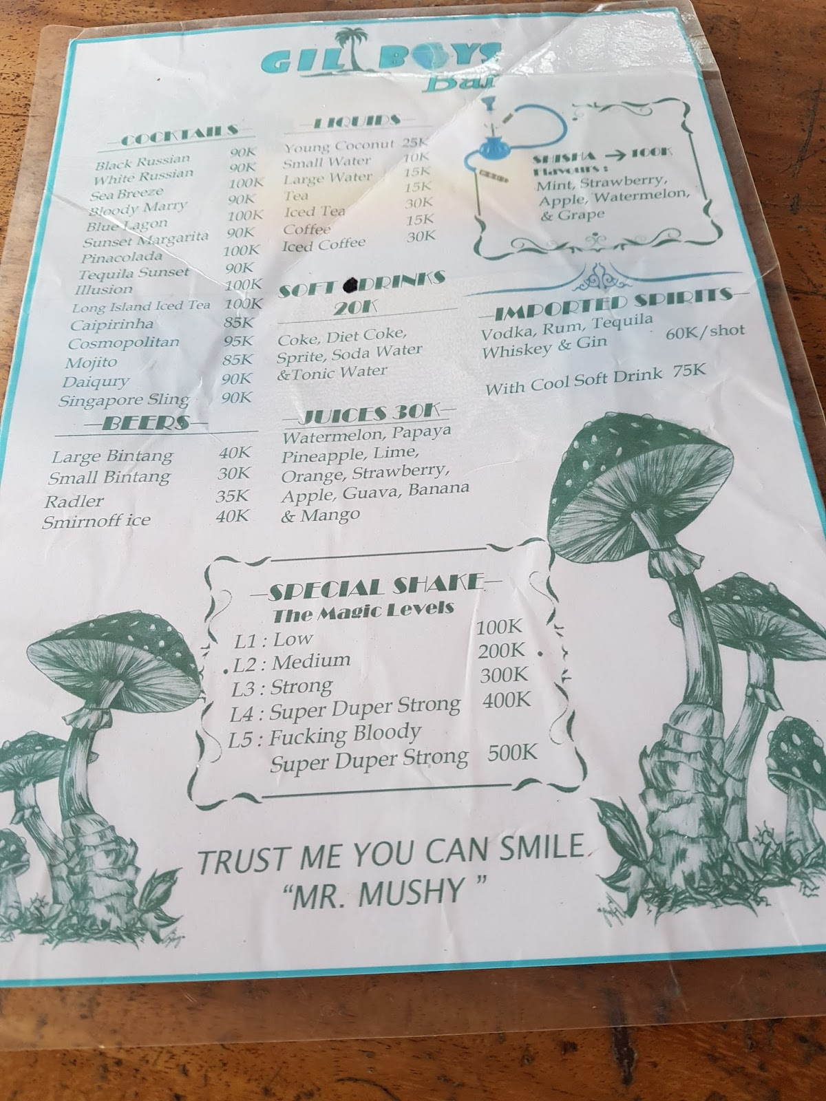 Magic mushrooms Gili Trawangan | Ummi Goes Where?
