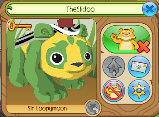 Image result for the slidoo animal jam