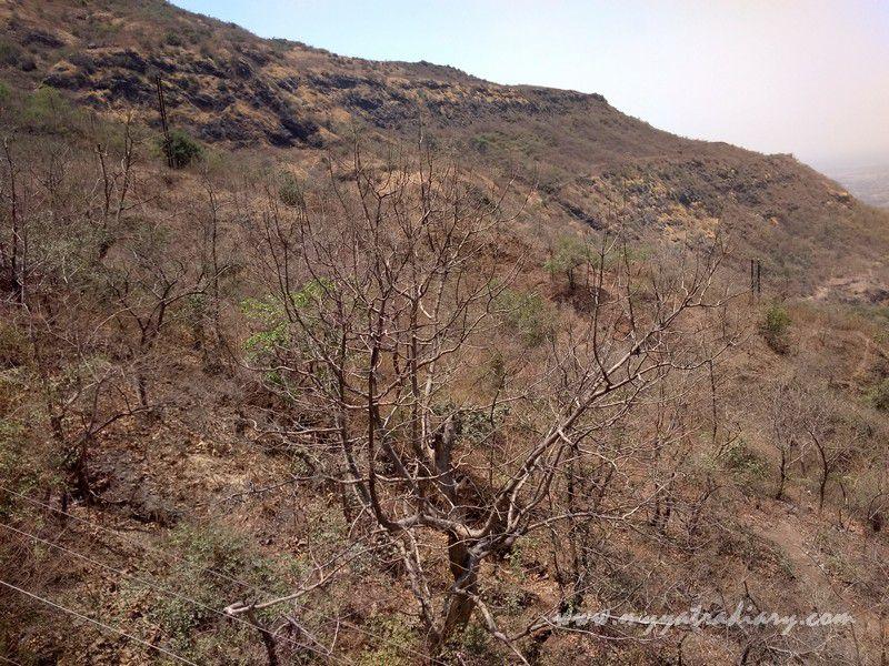 Beautiful Nature views from cable ropeway - Mahakalika Temple, Pavagad, Champaner Gujarat