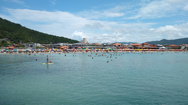 Beach with green waters and full of people.