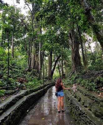 tempat wisata monkey forest ubud bali