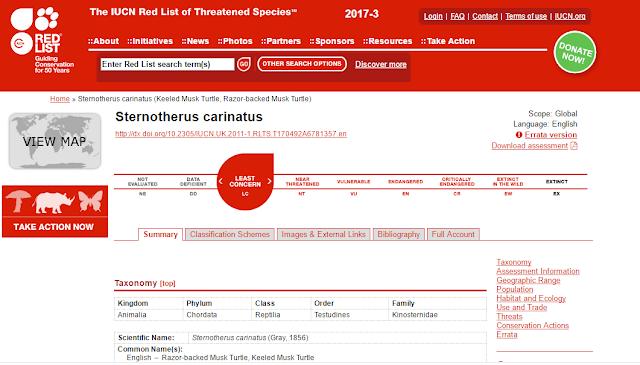 Situs IUCN Red List mengenai kura-kura Razorback
