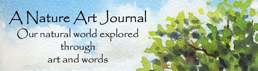 A Nature Art Journal