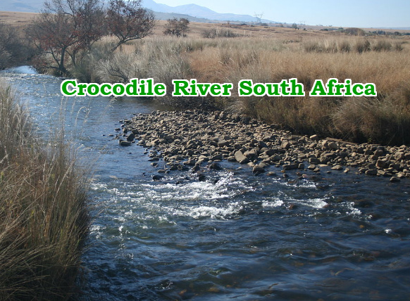 pastor eaten alive crocodiles south africa