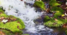 صور مناظر طبيعية hd