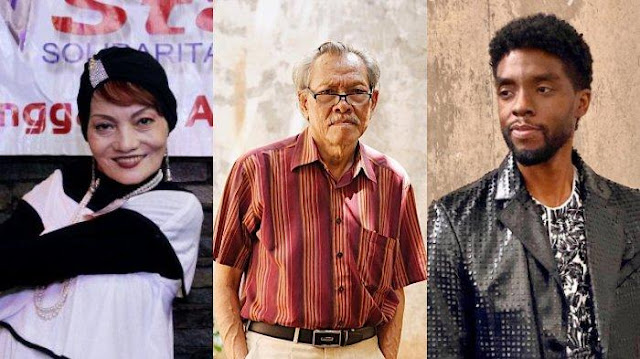 Terbaru Chadwick Boseman, 5 Artis Indonesia & Dunia Ini Meninggal Karena Idap Penyakit Kanker Usus