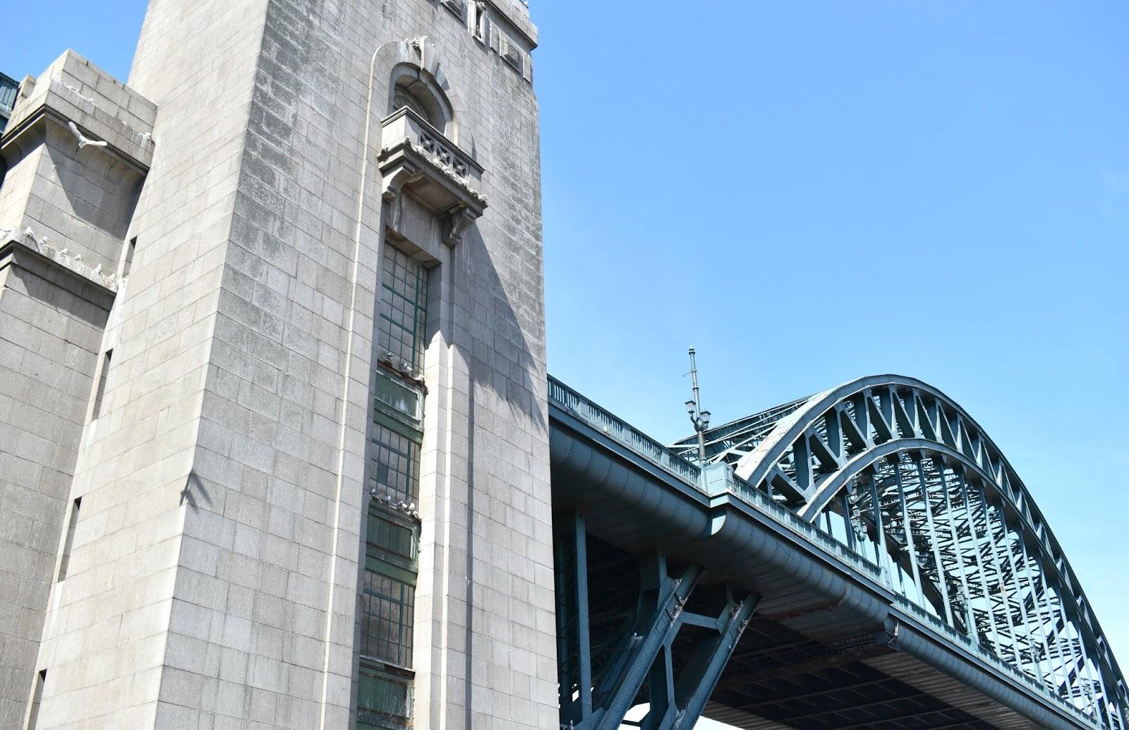 Tyne Bridge Kittiwakes - Newcastle