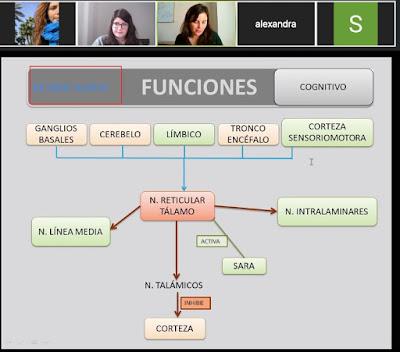 Inma Vico impartiendo el seminario de forma virtual