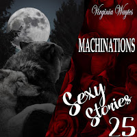 Sexy Stories 25 - Machinations: Werewolves, Magic & Mates