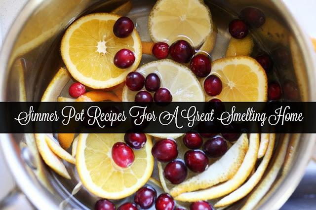 Simmer Pot Recipes For A Great Smelling Home  via  www.productreviewmom.com