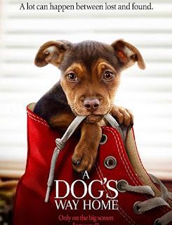 مشاهدة فيلم A Dog's Way Home 2019 BluRay مترجم مباشرة اون لاين مترجم