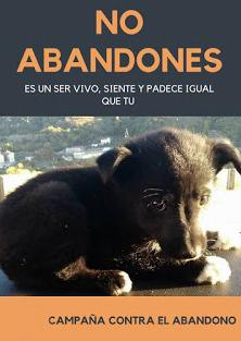 Campaña contra el abandono de perros
